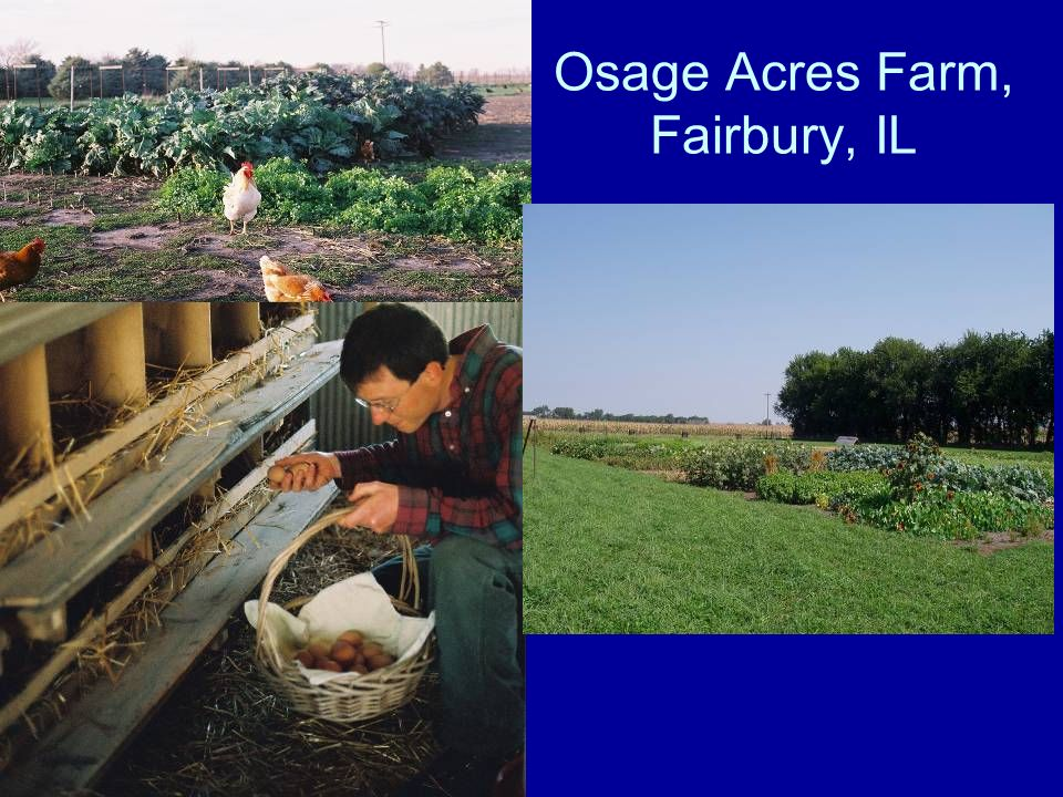 Osage Acres Farm, Fairbury, IL