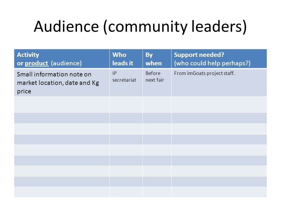 Audience (community leaders) Activity or product (audience) Who leads it By when Support needed? (who could help perhaps?) Small information note on m