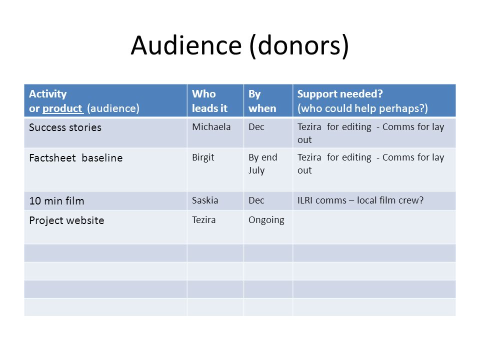 Audience (donors) Activity or product (audience) Who leads it By when Support needed? (who could help perhaps?) Success stories MichaelaDecTezira for