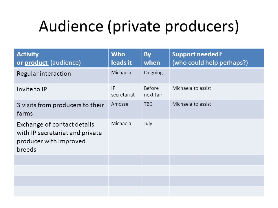 Audience (private producers) Activity or product (audience) Who leads it By when Support needed.