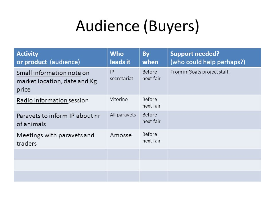 Audience (Buyers) Activity or product (audience) Who leads it By when Support needed? (who could help perhaps?) Small information note on market locat