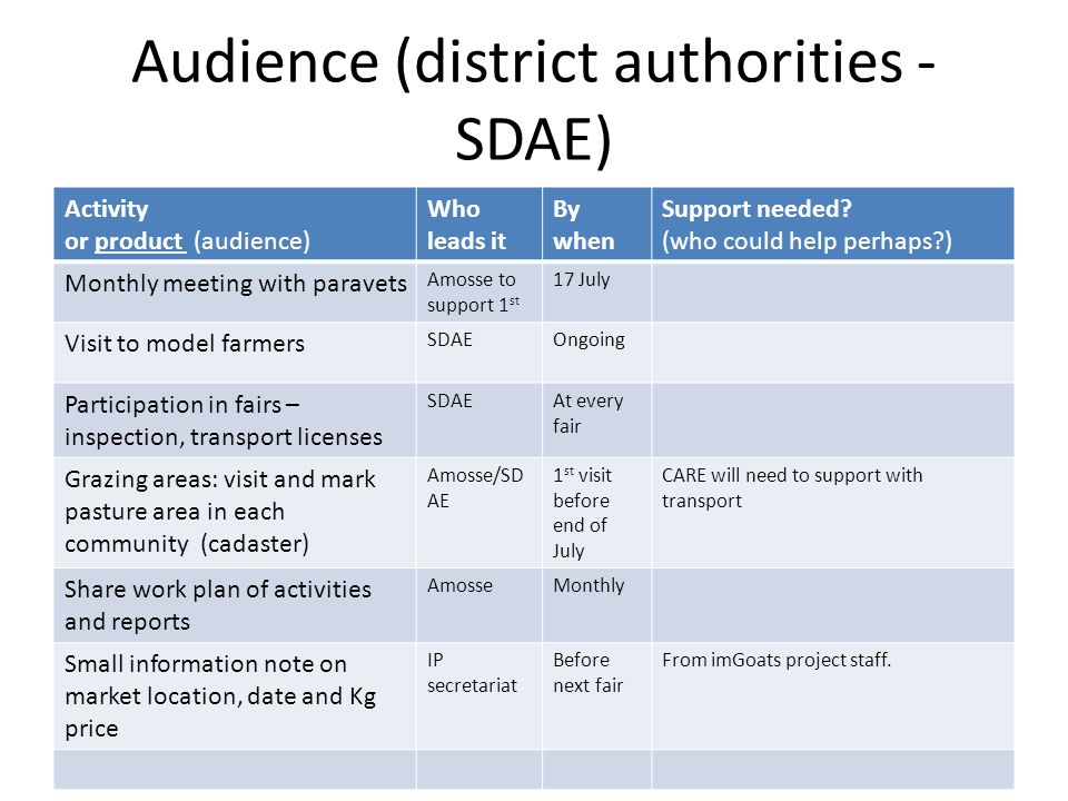Audience (district authorities - SDAE) Activity or product (audience) Who leads it By when Support needed.