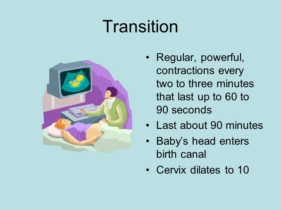 Transition Regular, powerful, contractions every two to three minutes that last up to 60 to 90 seconds Last about 90 minutes Babys head enters birth c