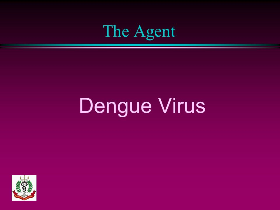 The Agent Dengue Virus