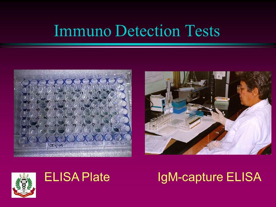 Immuno Detection Tests ELISA PlateIgM-capture ELISA