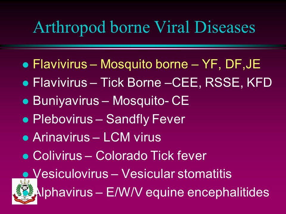 Arthropod borne Viral Diseases l Flavivirus – Mosquito borne – YF, DF,JE l Flavivirus – Tick Borne –CEE, RSSE, KFD l Buniyavirus – Mosquito- CE l Pleb