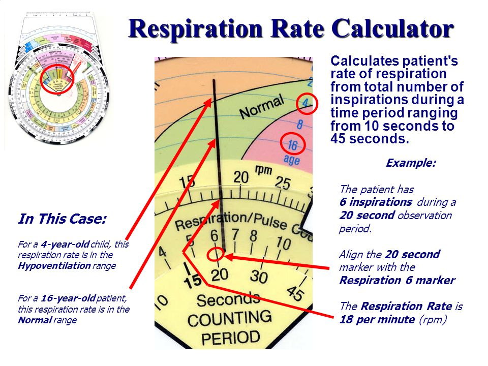 Respiration Rate Calculator Calculates patient's rate of respiration from total number of inspirations during a time period ranging from 10 seconds to
