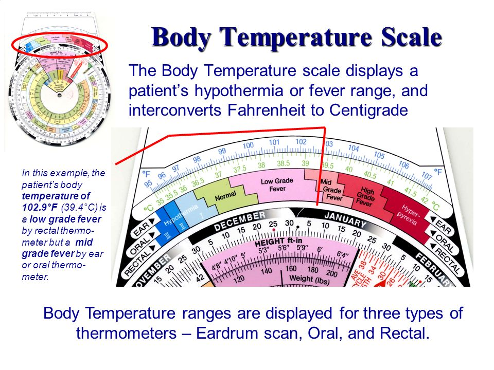 Body Temperature Scale The Body Temperature scale displays a patients hypothermia or fever range, and interconverts Fahrenheit to Centigrade Body Temp