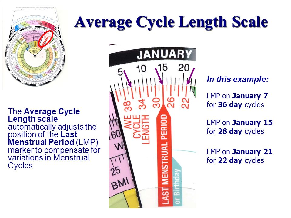 Average Cycle Length Scale The Average Cycle Length scale automatically adjusts the position of the Last Menstrual Period (LMP) marker to compensate f