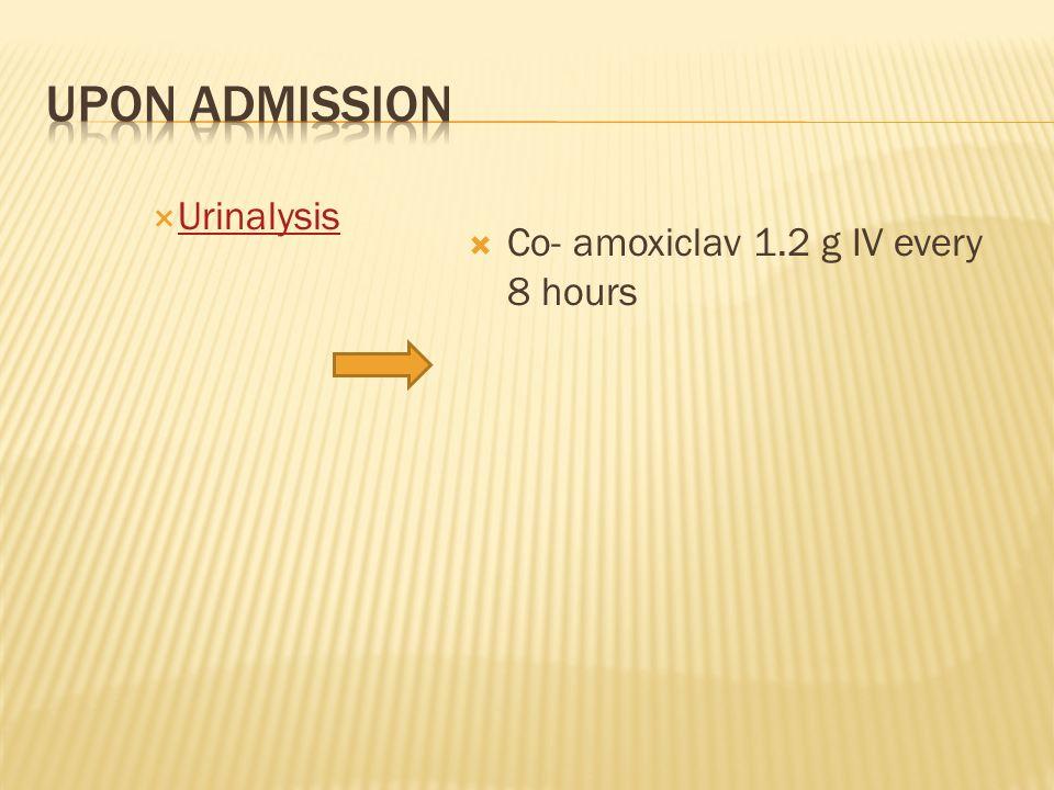 Urinalysis Co- amoxiclav 1.2 g IV every 8 hours