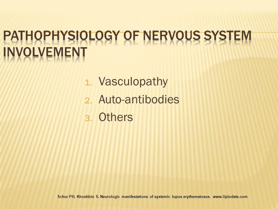 1. Vasculopathy 2. Auto-antibodies 3. Others Schur PH, Khoshbin S. Neurologic manifestations of systemic lupus erythematosus. www.Uptodate.com