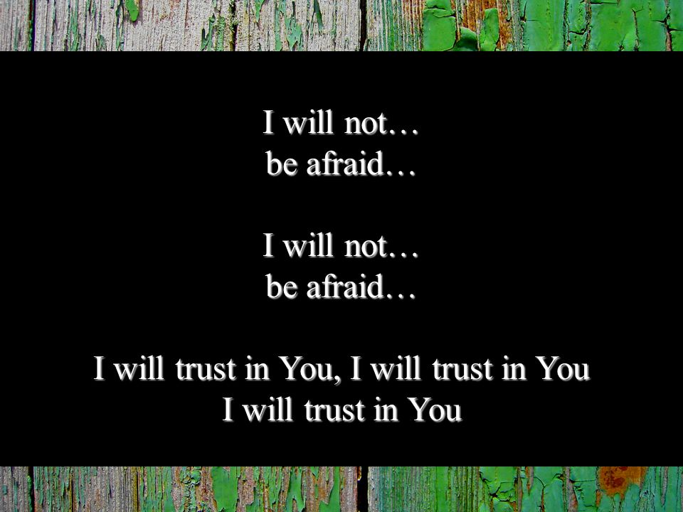 I will not… be afraid… I will not… be afraid… I will trust in You, I will trust in You I will trust in You