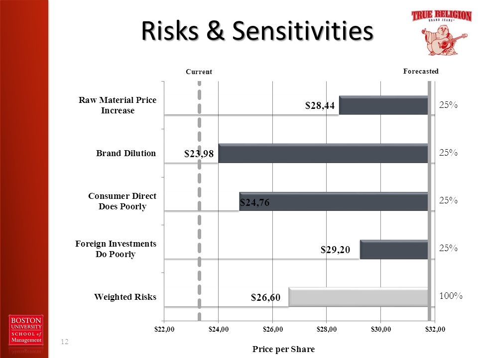 Risks & Sensitivities 12 25% 100%