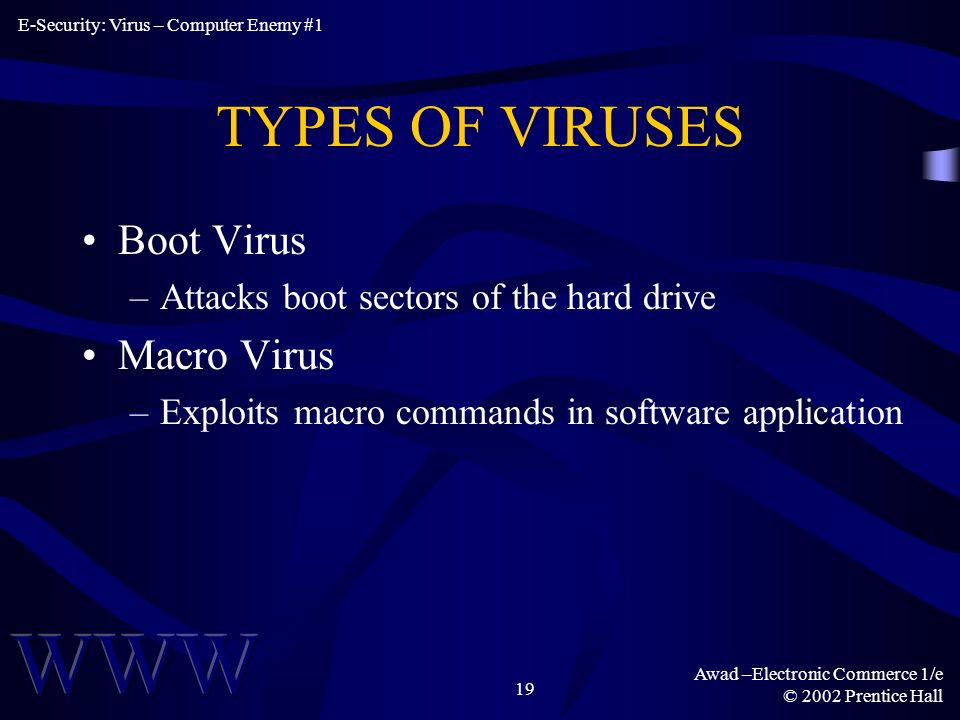 Awad –Electronic Commerce 1/e © 2002 Prentice Hall 19 TYPES OF VIRUSES Boot Virus –Attacks boot sectors of the hard drive Macro Virus –Exploits macro commands in software application E-Security: Virus – Computer Enemy #1