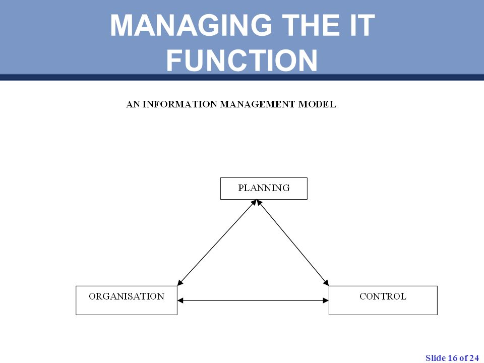Slide 16 of 24 MANAGING THE IT FUNCTION