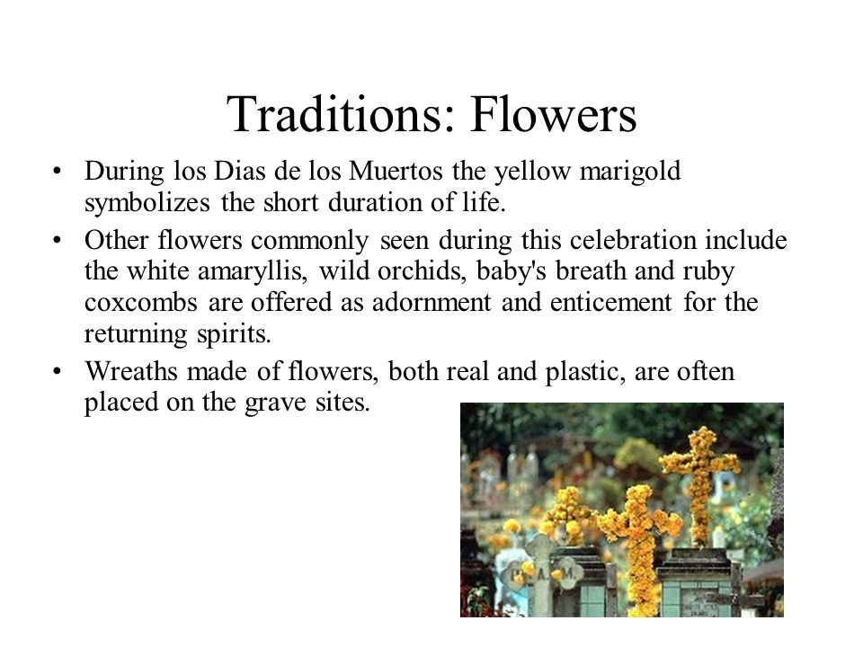 Traditions: Flowers During los Dias de los Muertos the yellow marigold symbolizes the short duration of life. Other flowers commonly seen during this