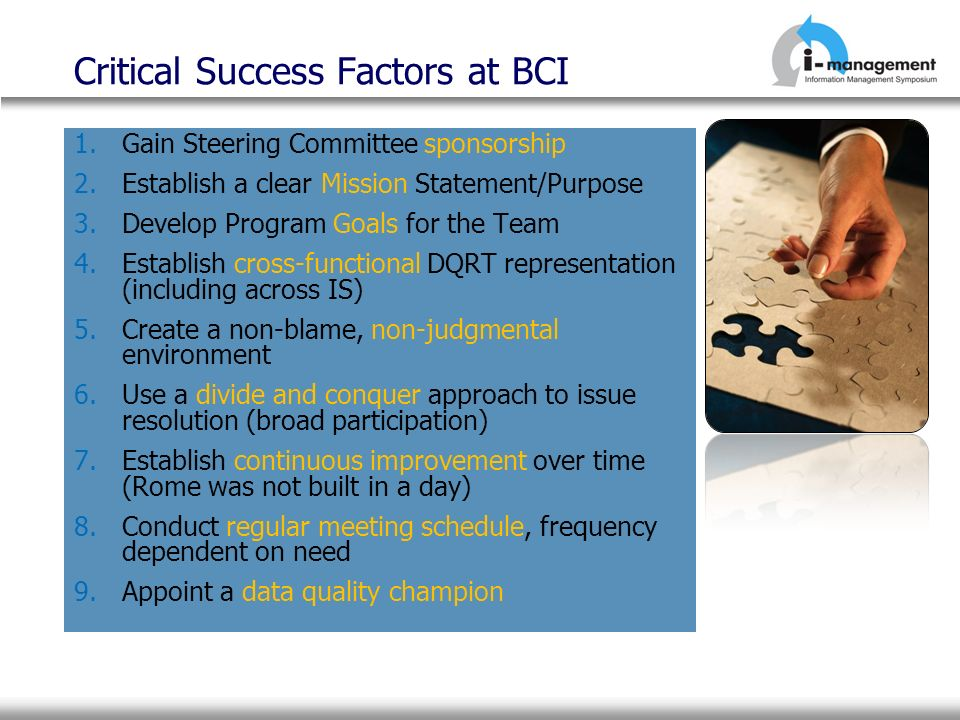 Critical Success Factors at BCI 1.Gain Steering Committee sponsorship 2.Establish a clear Mission Statement/Purpose 3.Develop Program Goals for the Te
