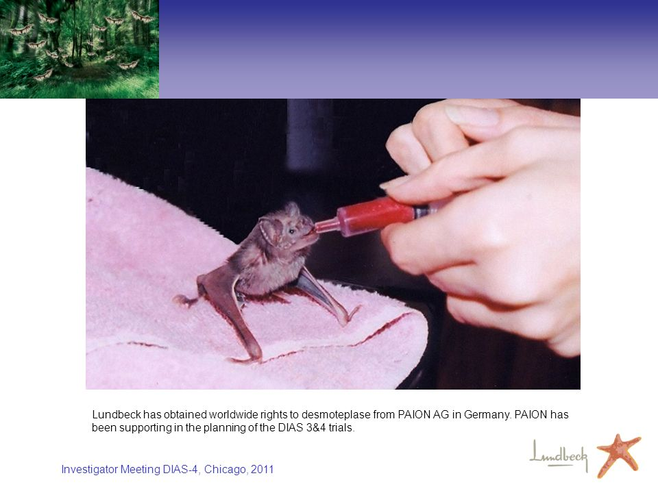 Investigator Meeting DIAS-4, Chicago, 2011 Lundbeck has obtained worldwide rights to desmoteplase from PAION AG in Germany. PAION has been supporting