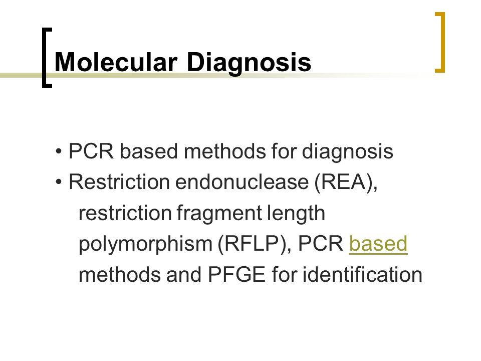 Molecular Diagnosis PCR based methods for diagnosis Restriction endonuclease (REA), restriction fragment length polymorphism (RFLP), PCR basedbased me