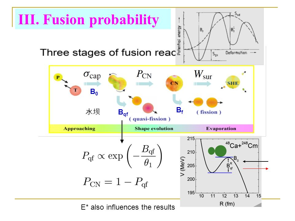 B0B0 BfBf B qf III. Fusion probability E* also influences the results