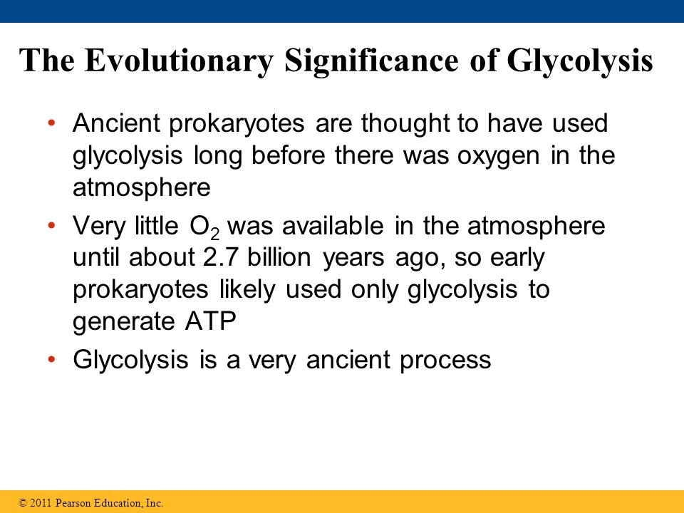 The Evolutionary Significance of Glycolysis Ancient prokaryotes are thought to have used glycolysis long before there was oxygen in the atmosphere Ver