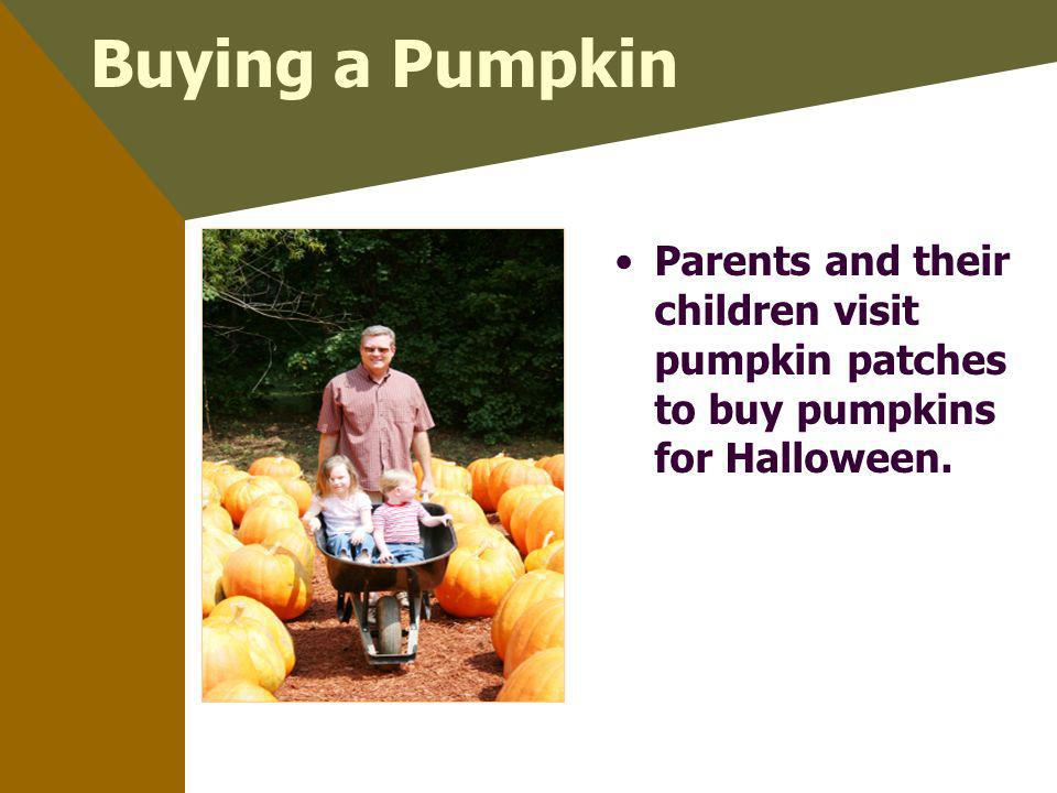 Buying a Pumpkin Parents and their children visit pumpkin patches to buy pumpkins for Halloween.