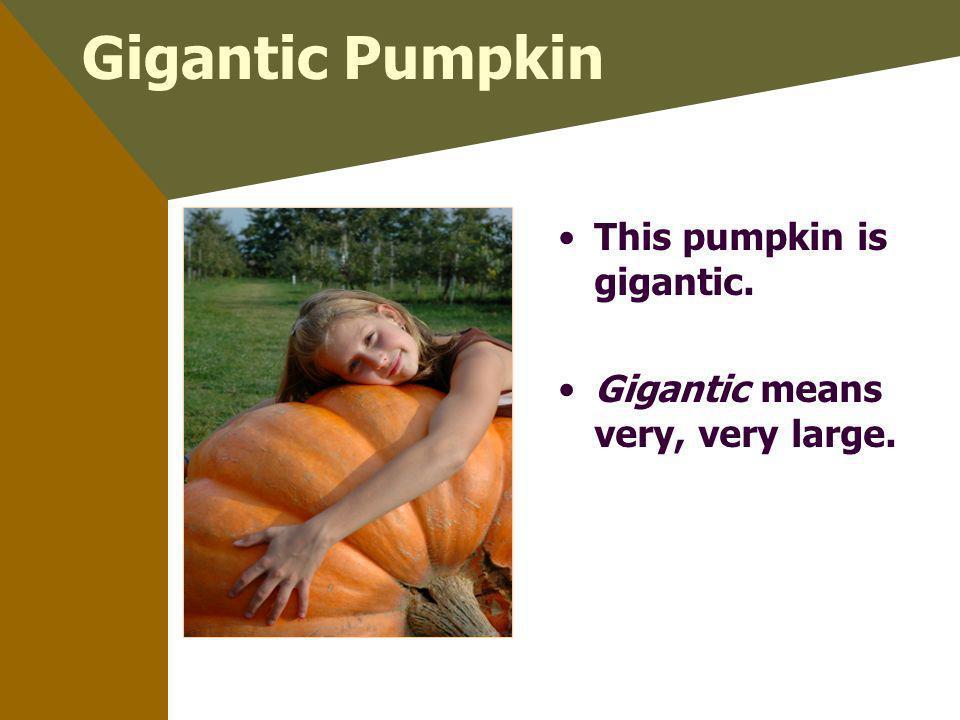 Gigantic Pumpkin This pumpkin is gigantic. Gigantic means very, very large.