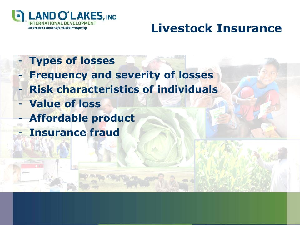 Livestock Insurance -Types of losses -Frequency and severity of losses -Risk characteristics of individuals -Value of loss -Affordable product -Insurance fraud