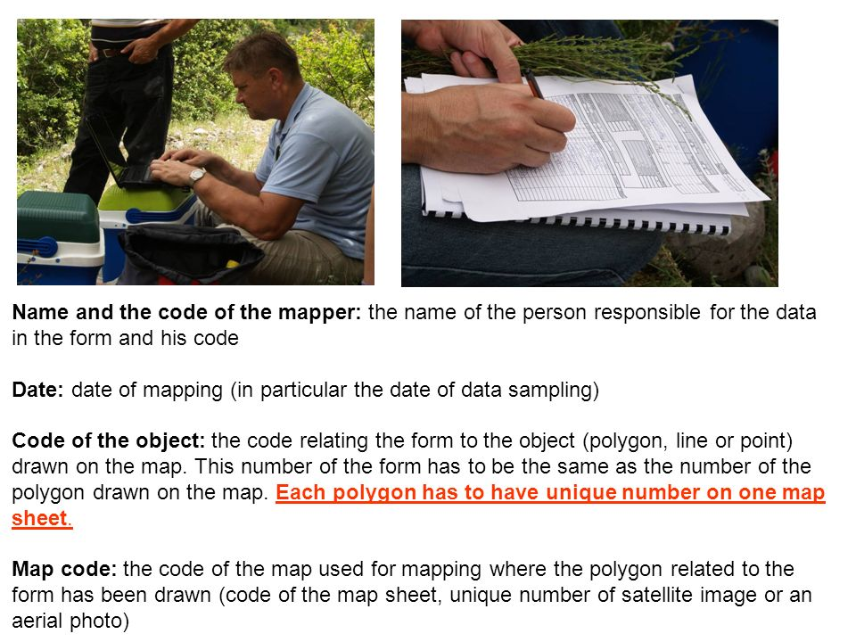 Name and the code of the mapper: the name of the person responsible for the data in the form and his code Date: date of mapping (in particular the dat