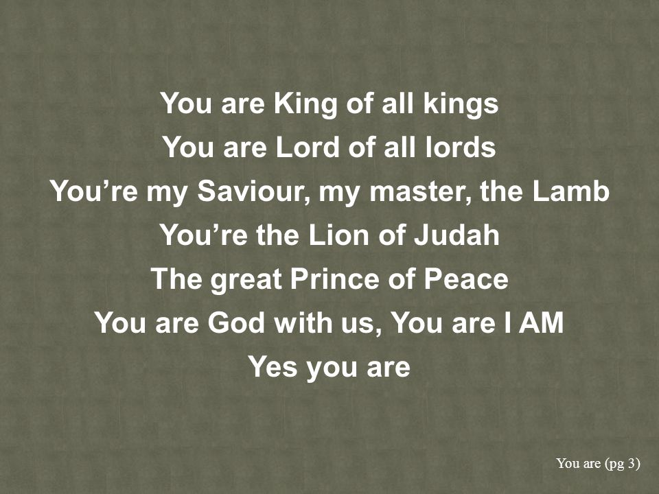 You are King of all kings You are Lord of all lords Youre my Saviour, my master, the Lamb Youre the Lion of Judah The great Prince of Peace You are Go