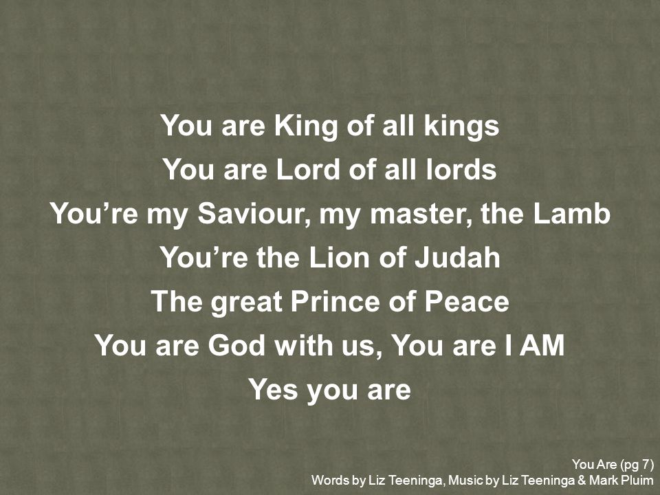 You Are (pg 7) Words by Liz Teeninga, Music by Liz Teeninga & Mark Pluim You are King of all kings You are Lord of all lords Youre my Saviour, my mast