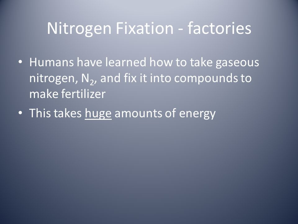Nitrogen Fixation - factories Humans have learned how to take gaseous nitrogen, N 2, and fix it into compounds to make fertilizer This takes huge amou