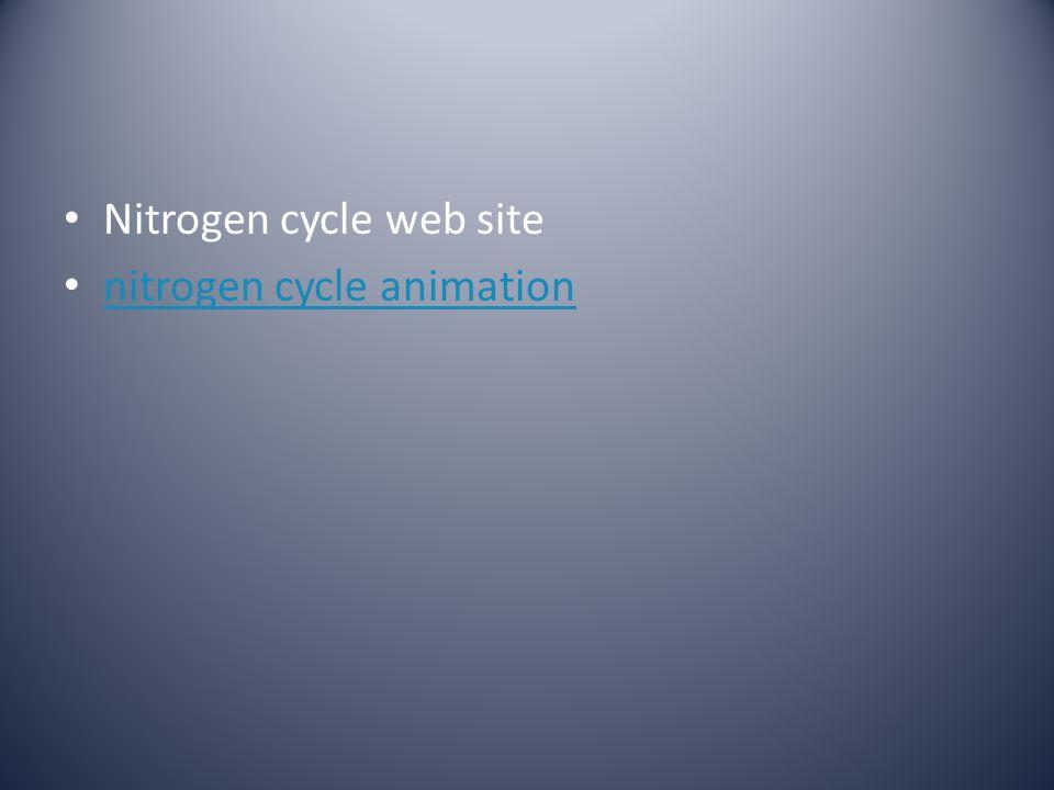 Nitrogen cycle web site nitrogen cycle animation