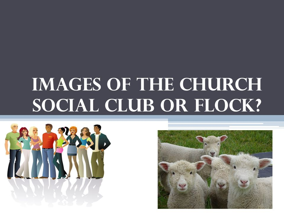 Images of the Church Social Club or Flock?