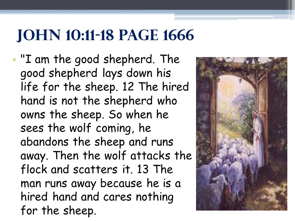 John 10:11-18 Page 1666 I am the good shepherd.