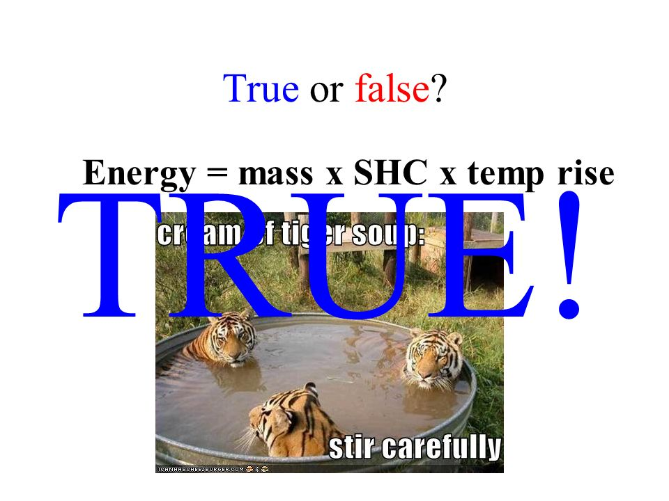 True or false? Particles in a solid, liquid or gas are all the same size (for the same substance)