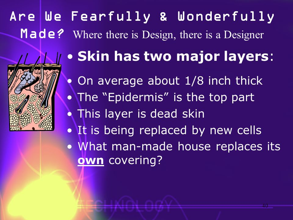 Are We Fearfully & Wonderfully Made? Where there is Design, there is a Designer Skin has two major layers: On average about 1/8 inch thick The Epiderm
