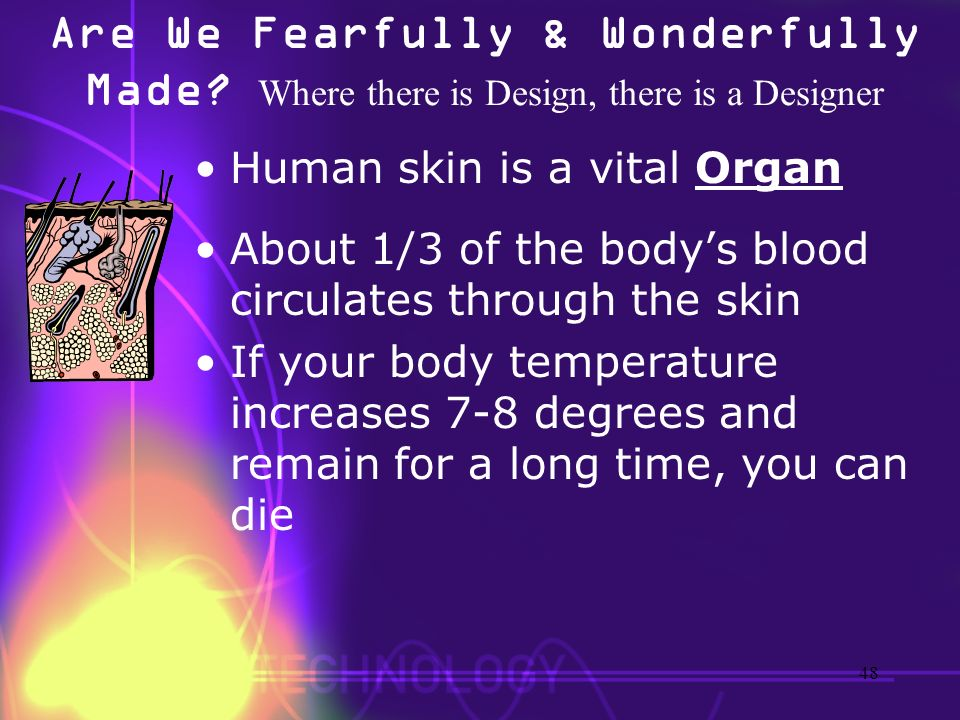 Are We Fearfully & Wonderfully Made? Where there is Design, there is a Designer Human skin is a vital Organ About 1/3 of the bodys blood circulates th