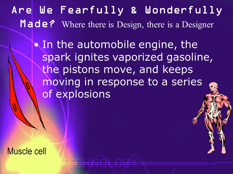 Are We Fearfully & Wonderfully Made? Where there is Design, there is a Designer In the automobile engine, the spark ignites vaporized gasoline, the pi