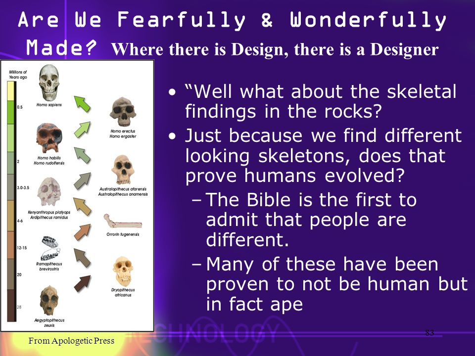 Are We Fearfully & Wonderfully Made? Where there is Design, there is a Designer Well what about the skeletal findings in the rocks? Just because we fi