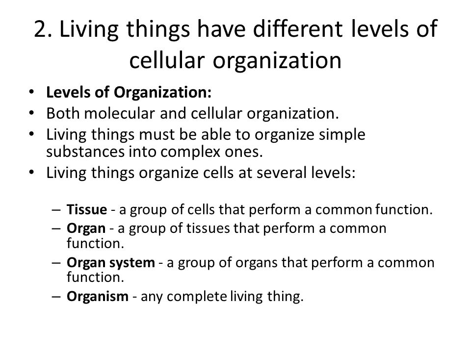 2. Living things have different levels of cellular organization Levels of Organization: Both molecular and cellular organization. Living things must b