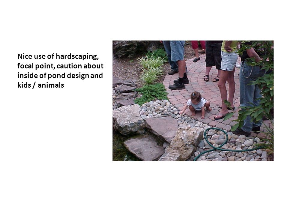 Nice use of hardscaping, focal point, caution about inside of pond design and kids / animals