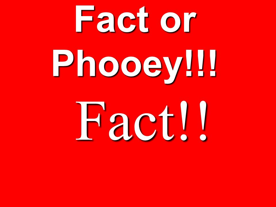 Fact or Phooey!!! Fact!!