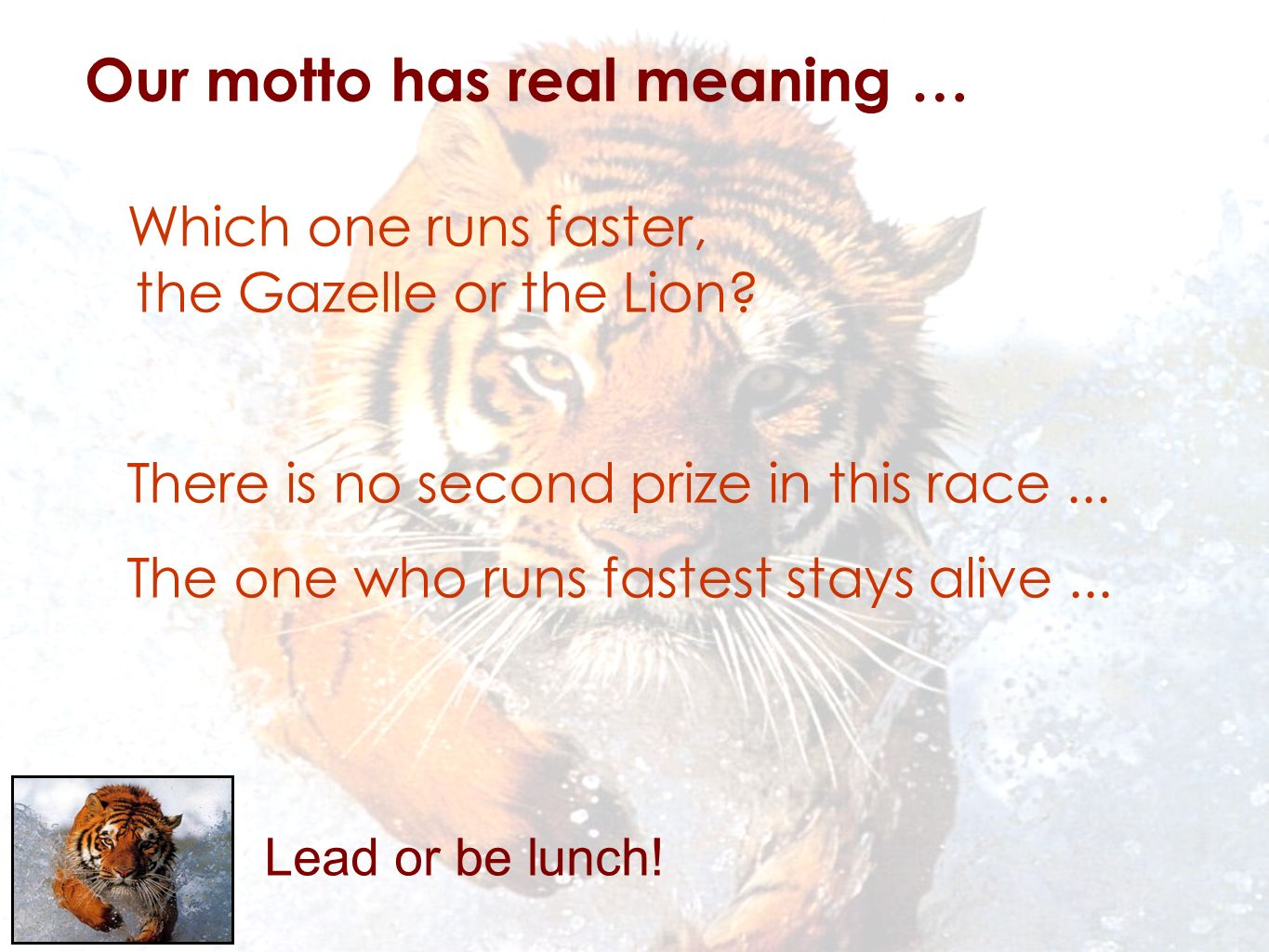 Lead or be lunch. Our motto has real meaning … Which one runs faster, the Gazelle or the Lion.