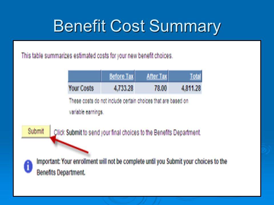 Benefit Cost Summary