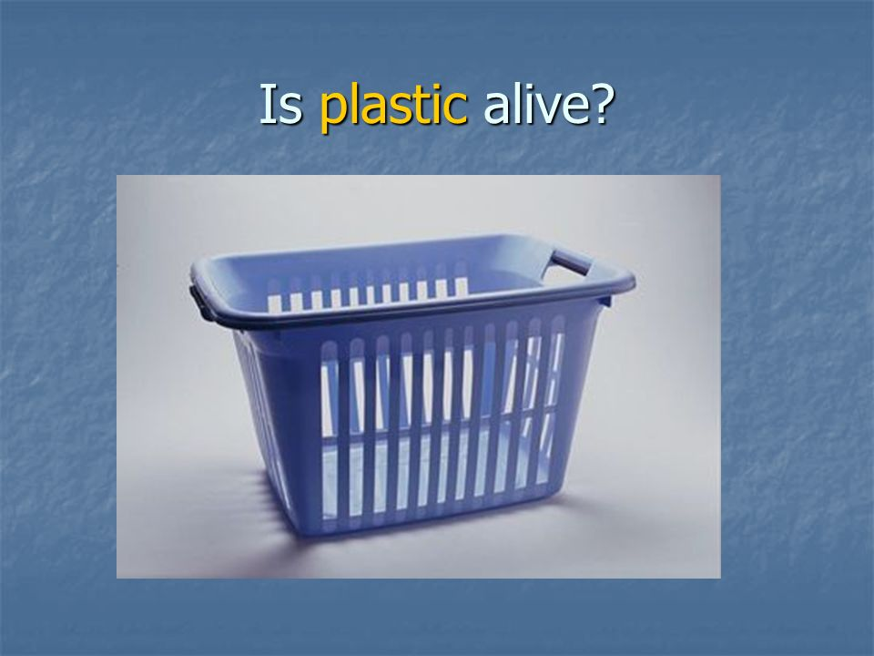 Is plastic alive