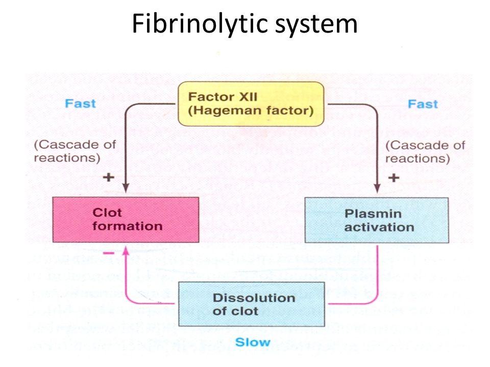 Fibrinolytic system