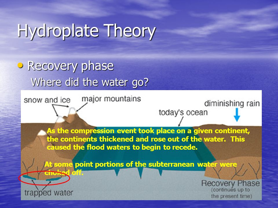 Hydroplate Theory Recovery Recovery phase Where did the water go? As the compression event took place on a given continent, the continents thickened a
