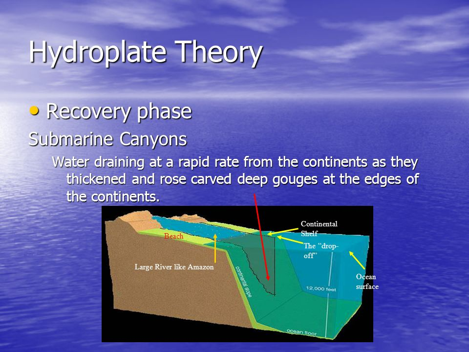 Hydroplate Theory Recovery Recovery phase Submarine Canyons Water draining at a rapid rate from the continents as they thickened and rose carved deep