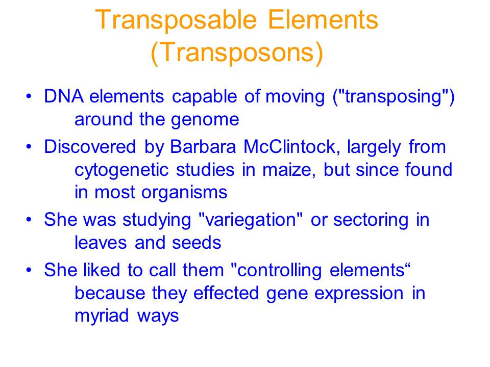 Transposable Elements (Transposons) DNA elements capable of moving (
